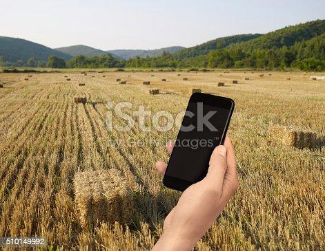 istock wheat field 510149992