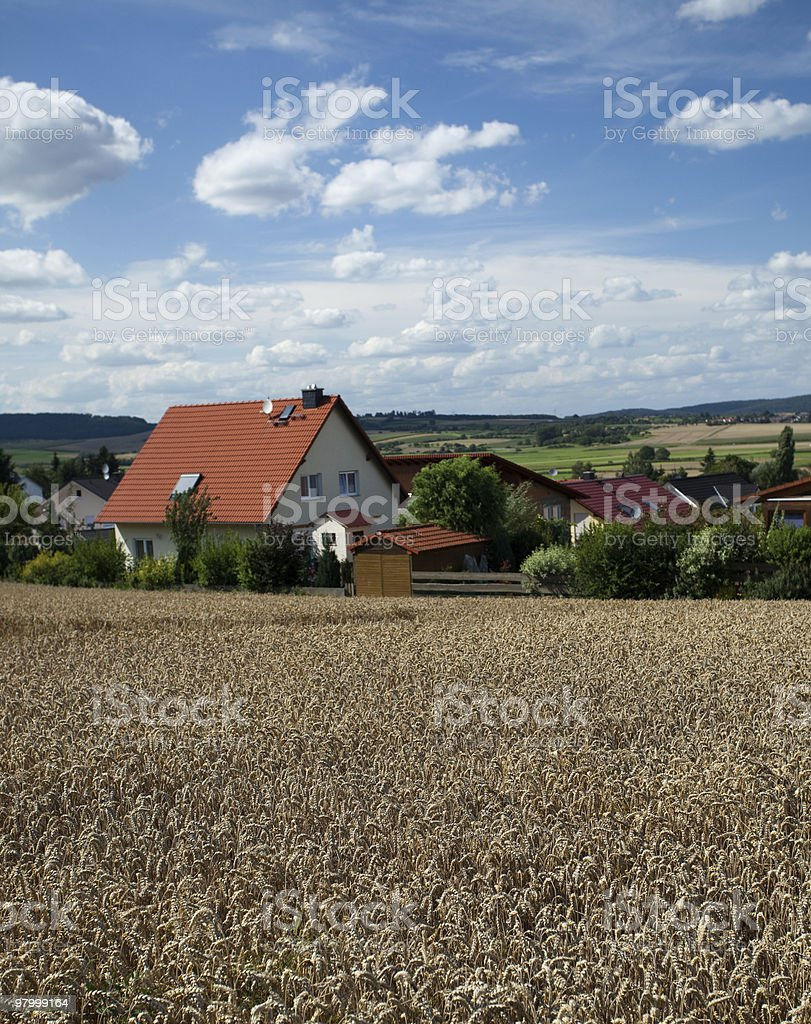 wheat field red roof rural blue sky white clouds town royalty-free stock photo