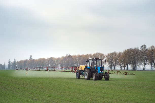 wheat field tractor spraying agrochemical or agrichemical over young grain field in most cases agrichemical refers to pesticides like insecticides herbicides fungicides and nematicides stock photo