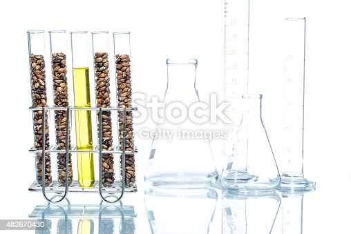 891126108istockphoto Wheat genetically modified, Plant Cell 482670430