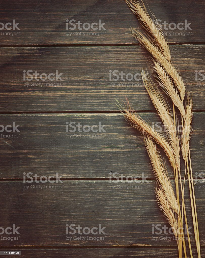 Wheat grass on a rustic brown table stock photo