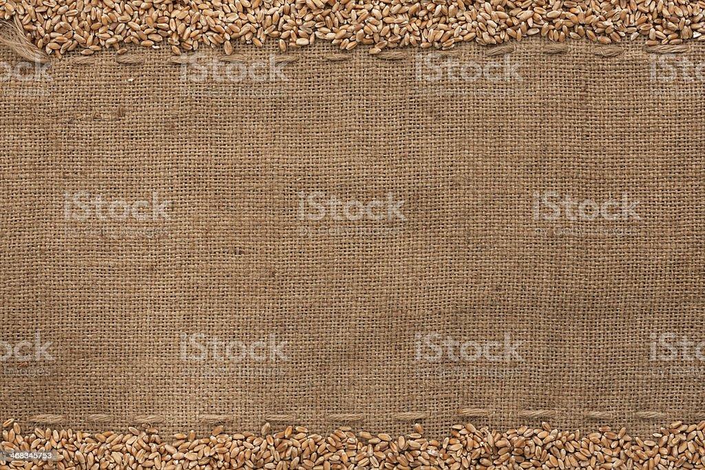 wheat lying on sackcloth royalty-free stock photo