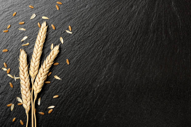 wheat on stone wheat ears on black stone texture ear of wheat stock pictures, royalty-free photos & images