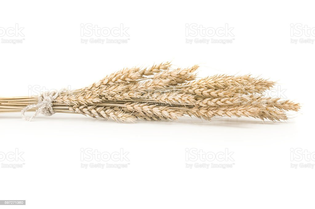 wheat on the white background Lizenzfreies stock-foto