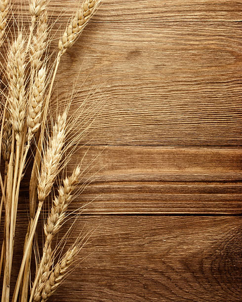 wheat on the wood background stock photo