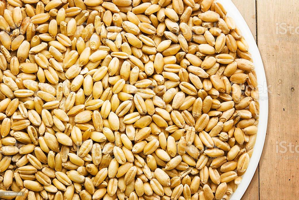 Wheat on wooden floor stock photo