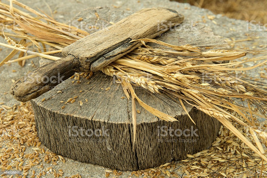 Wheat peeling stock photo