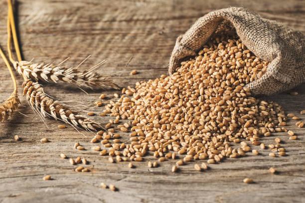 Weizen-Stapel auf hölzernen Hintergrund – Foto