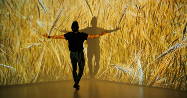 Wheat projection upon a male dancer stock photo