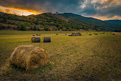 Wheat round haystacks on a field near the mountains at sunrise or sunset