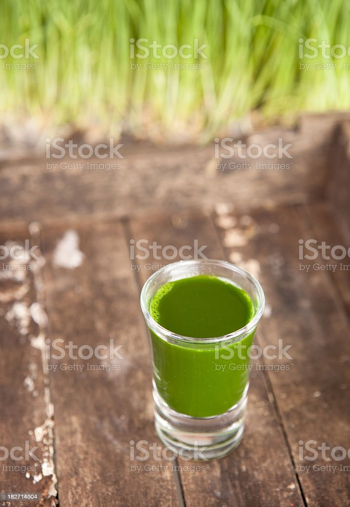 Wheatgrass juice stock photo