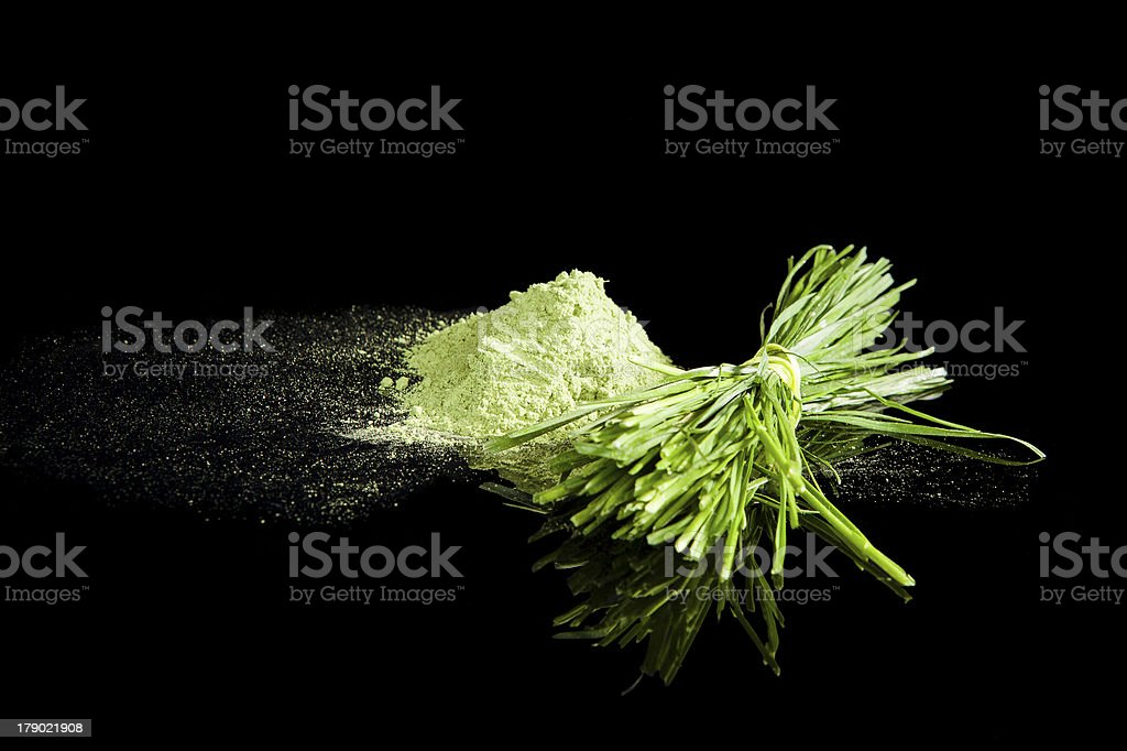 Wheatgrass. stock photo