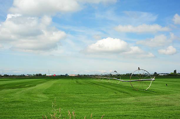 Wheel line irrigation system stock photo