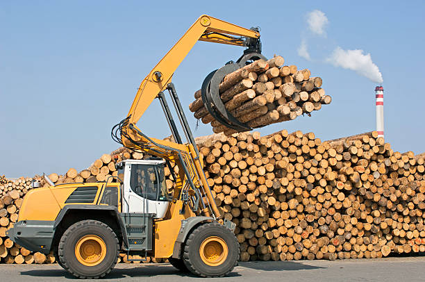 wheel loader-industria forestale - industria forestale foto e immagini stock