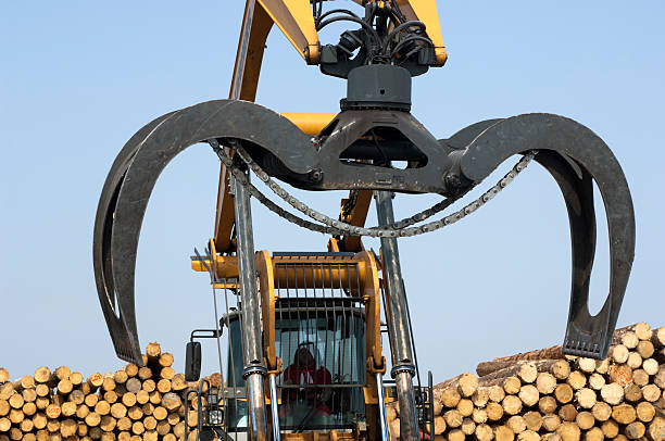 wheel loader with gripping machinery - logging equipment stock photos and pictures