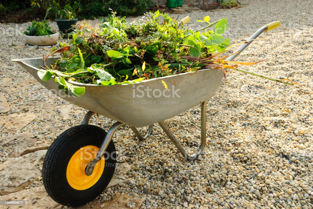 Wheelbarrow and Leaves for Composting royalty-free stock photo
