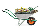istock Wheelbarrow full of gardening equipment 517999354