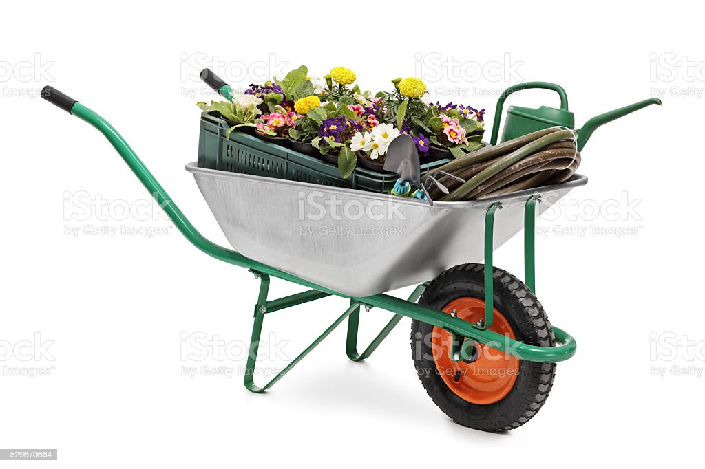 Wheelbarrow full of gardening equipment stock photo