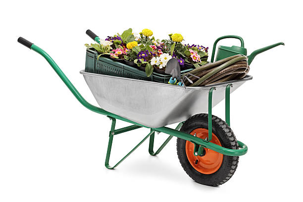 wheelbarrow full of gardening equipment - kruiwagen stockfoto's en -beelden