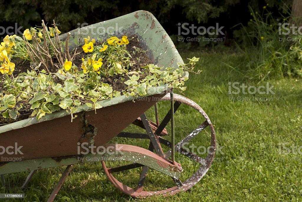 wheelbarrow in a garden stock photo