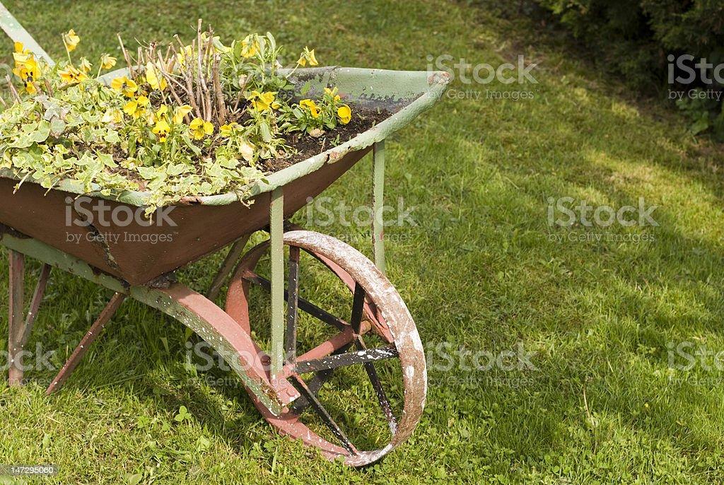 wheelbarrow in spring stock photo