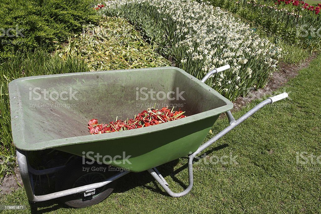 Wheelbarrow royalty-free stock photo
