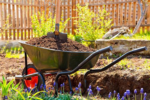 Happy children gardening in summer