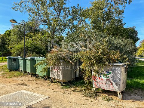 Valencia, Spain - October 18, 2020: Six wheeled garbage bin in a row with pruned tree brunches in them. This operation of maintenance of the Turia garden is performed once a year