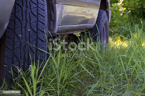 Wheels a car SUV in the forest grass. Selective focus