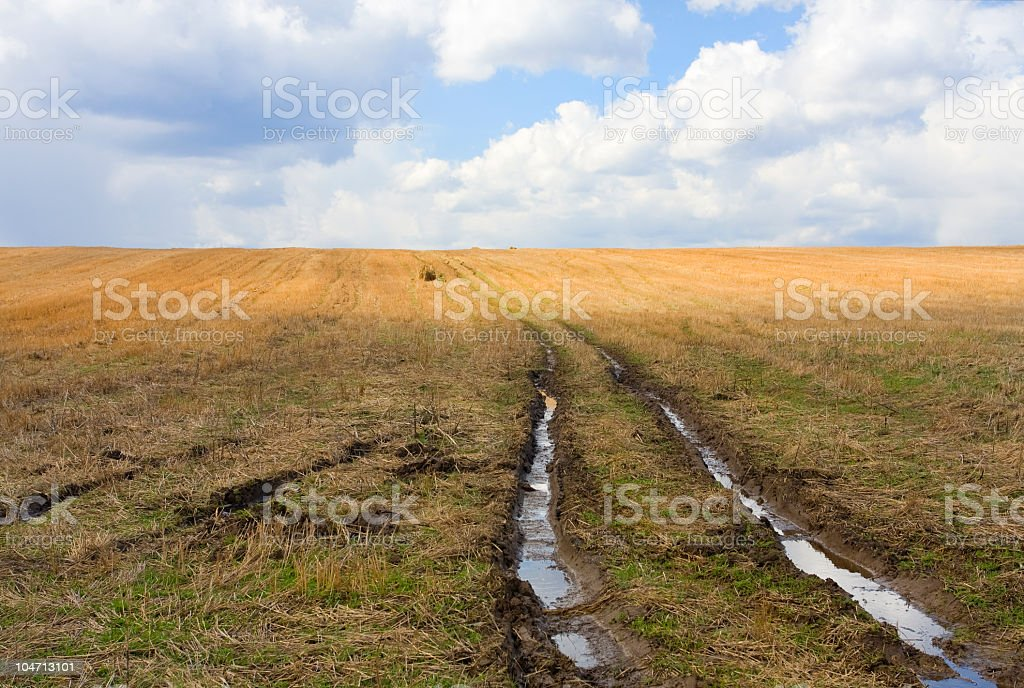 Wheel-worn rut filled with puddles across stubble field stock photo