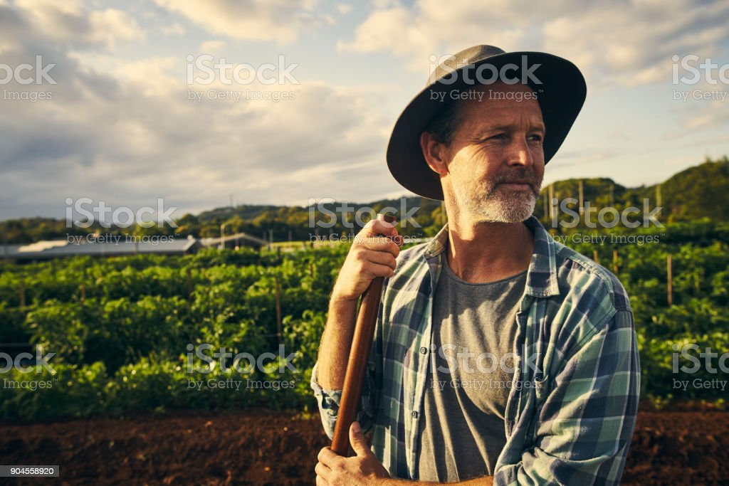 When it comes to farming, you've gotta be hands on stock photo
