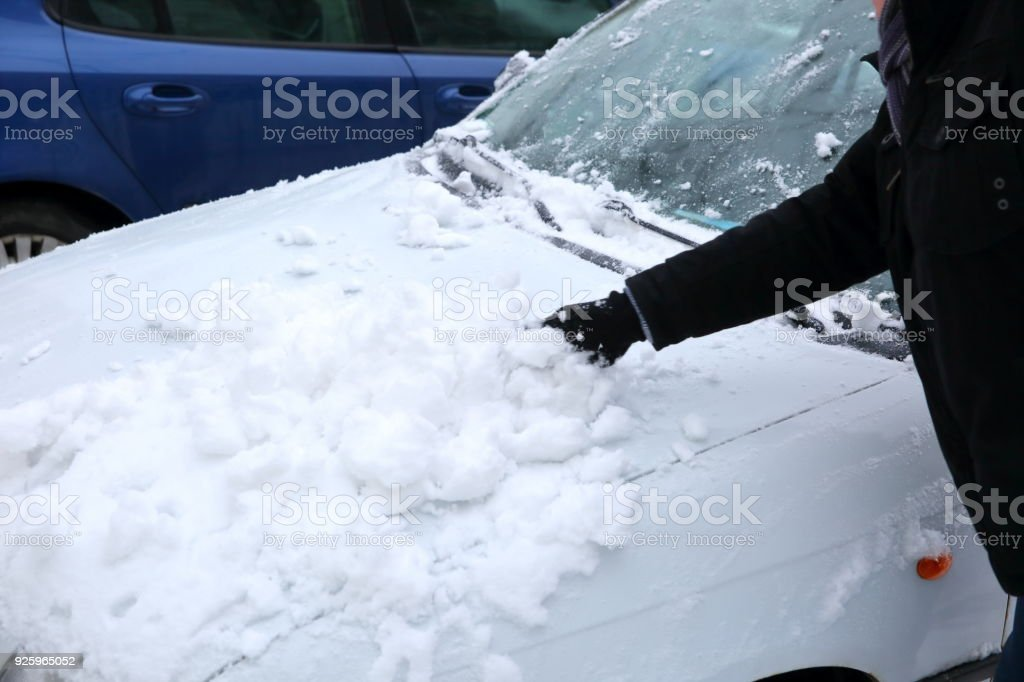 When it's snowing, every standing car in the parking lot is covered with a white layer of petals. stock photo