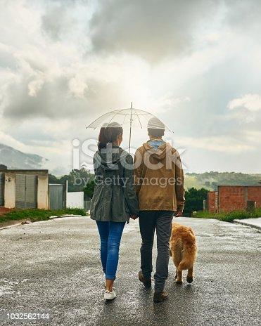 Rearview shot of a couple walking with their dog