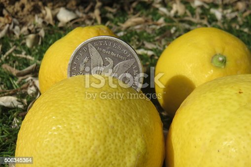 """Turn a lemon(s) into lemonade"""