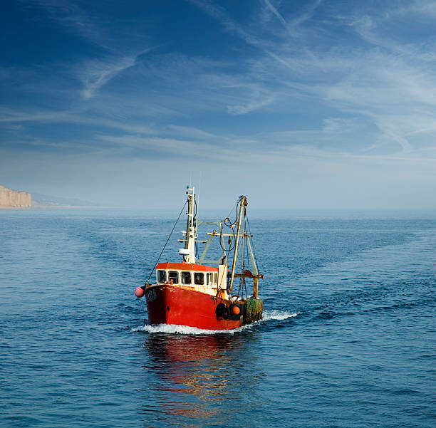 when the boat comes in - fishing boat stock pictures, royalty-free photos & images
