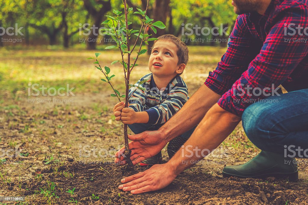 When will it grow? stock photo