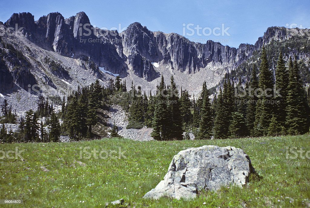 Glacial Erratic in an Alpine Meadow royalty-free stock photo