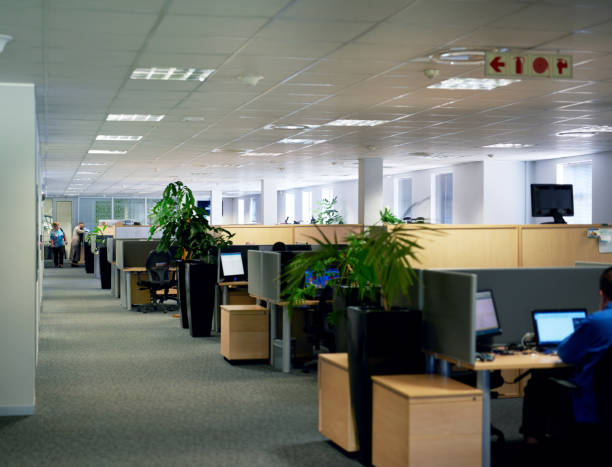 where business happens - office cubicle stock pictures, royalty-free photos & images
