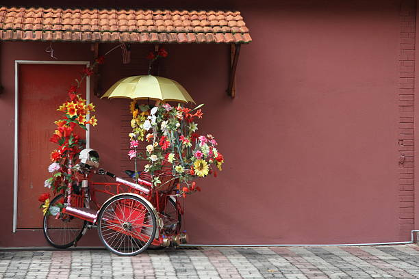 where is my red tricycle - malakka staat stockfoto's en -beelden