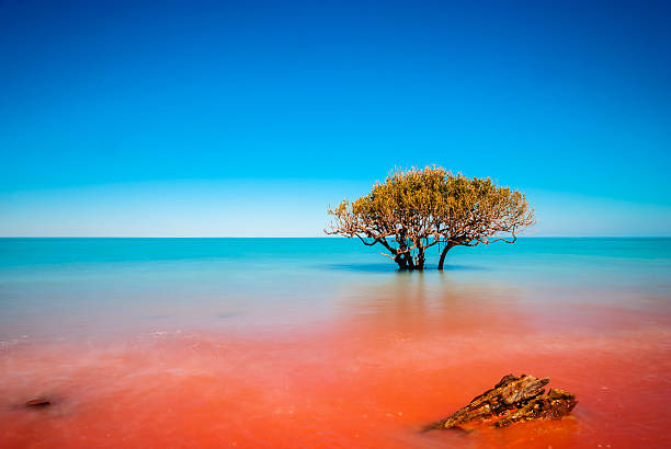 Where the red dirt meets the sea stock photo