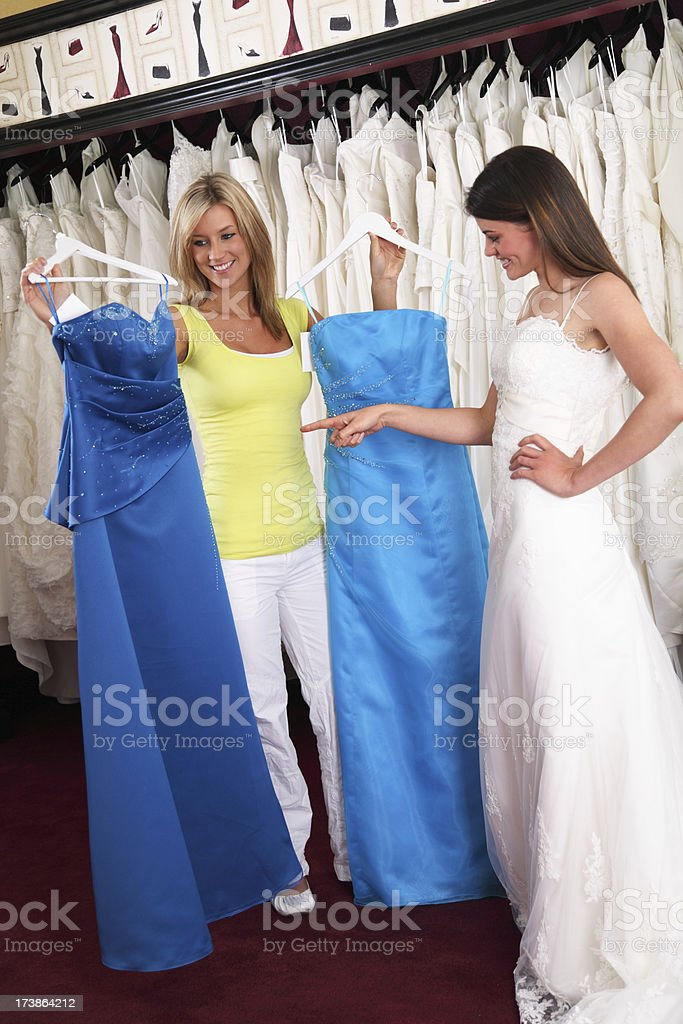 Which Bridesmaid Dress? royalty-free stock photo