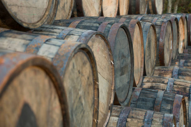 Whisky Barrels stock photo