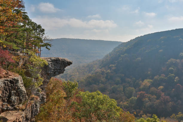 whitaker point hawksbill crag - outcrop stock pictures, royalty-free photos & images