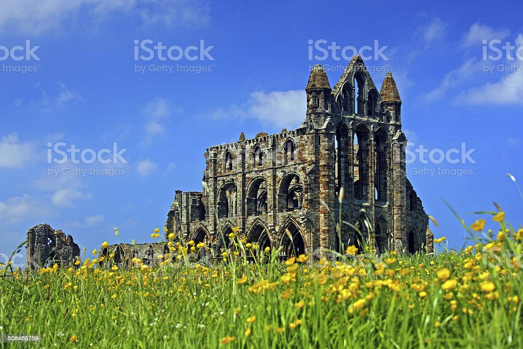 Whitby Abbey A different view of Whitby Abbey with a vibrant Hot Summer Day feel. Abbey - Monastery Stock Photo