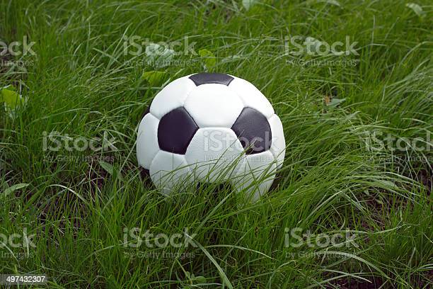 White and black ball for playing soccer in green grass picture id497432307?b=1&k=6&m=497432307&s=612x612&h=hijmb2e1fbj932xul7slhn7sjtk8h4ip8mbmz6fhrkc=