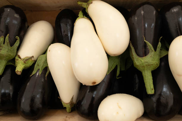 White and black eggplants on a market stall stock photo