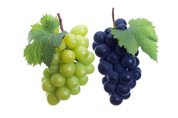 blanco y negro de uvas - grapes fotografías e imágenes de stock