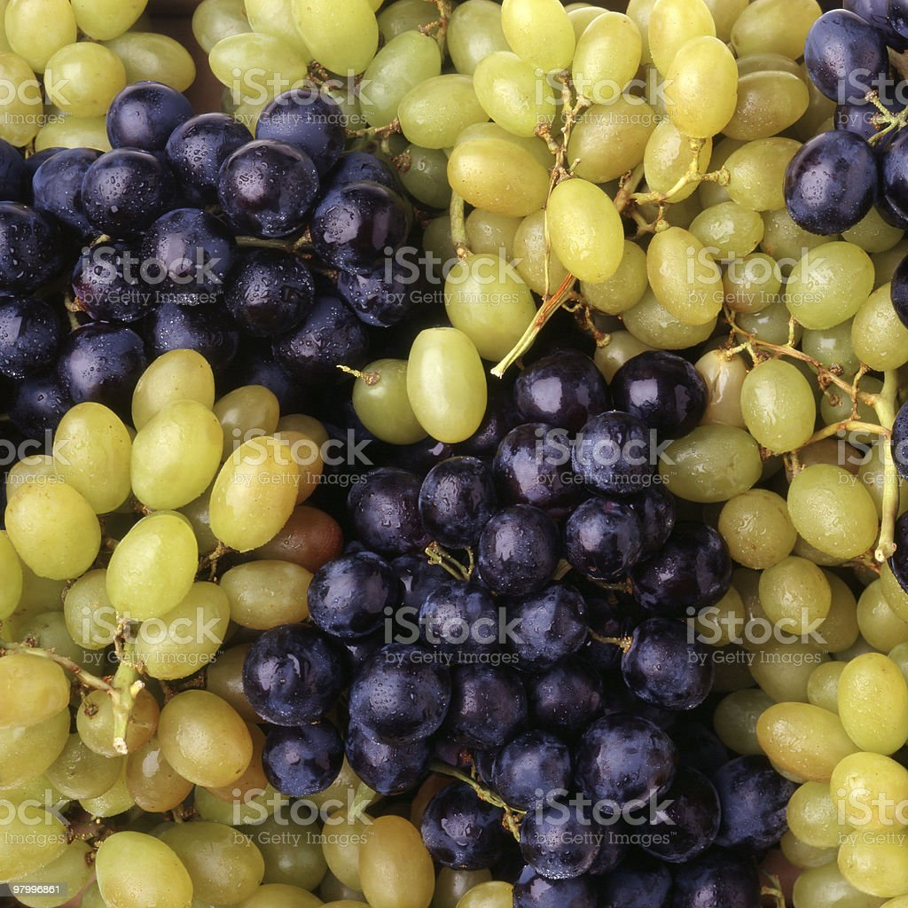 White and Black Grapes royalty-free stock photo