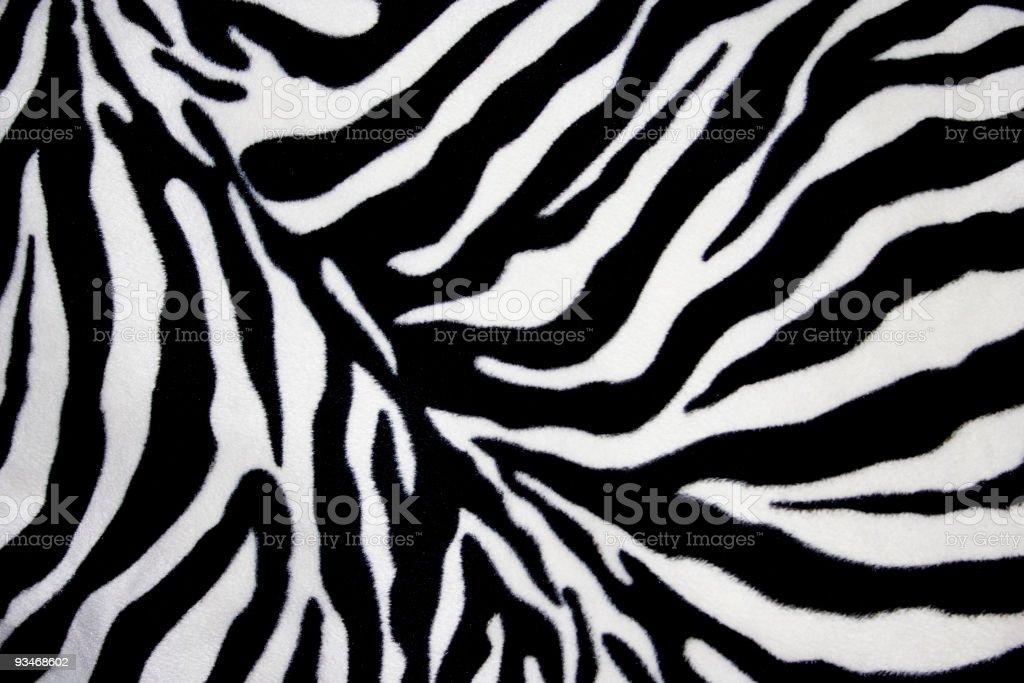 White and black zebra background stock photo
