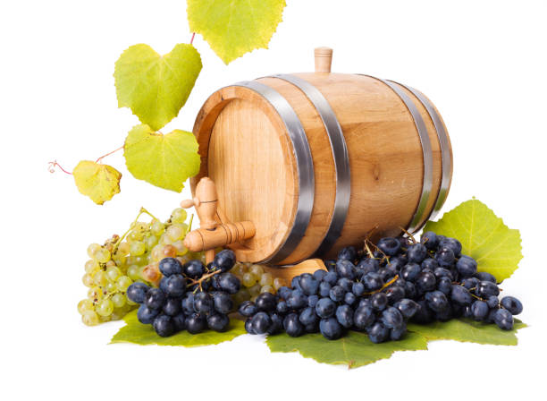 White and blue grape clusters around barrel stock photo